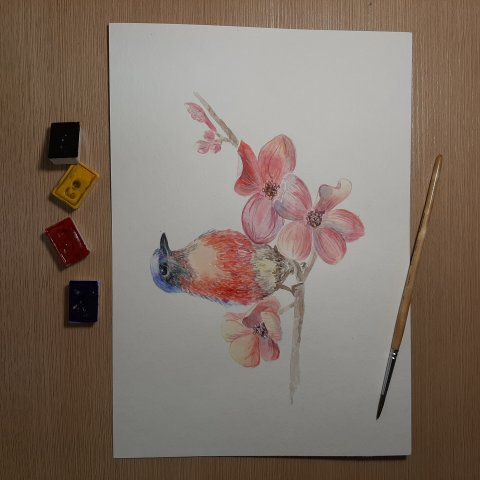 Урок третий.Птичка