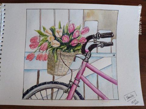 Мой велосипед с тюльпанами